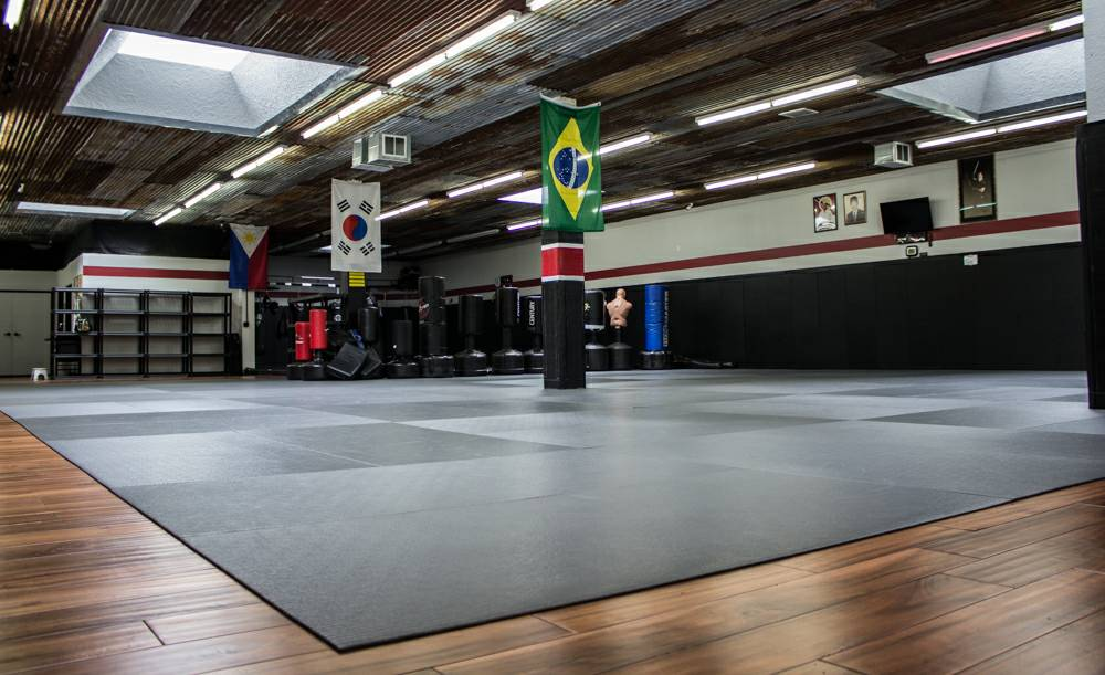 MMA in Des Moines IA