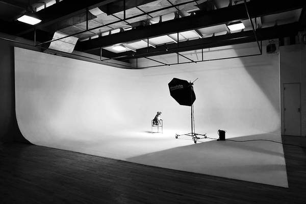 You can have your own photography studio in our new building